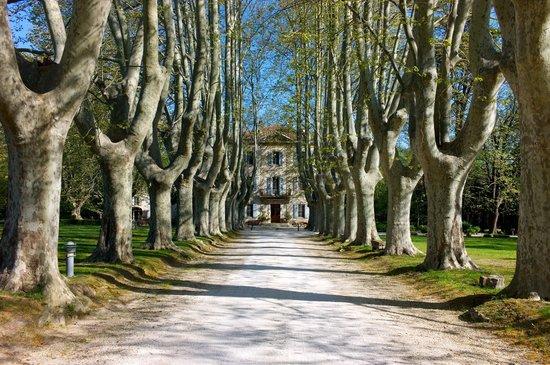 Le Chateau des Alpilles: driveway to the hotel