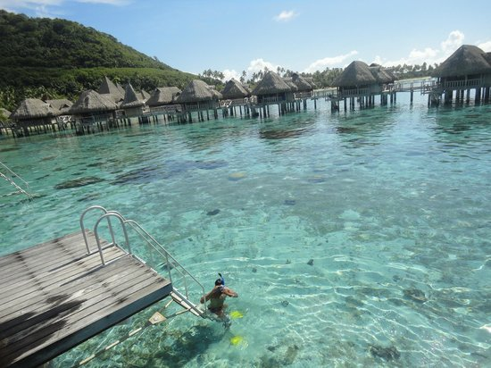Sofitel Moorea Ia Ora Beach Resort: Vista desde la terraza del bungalow over water