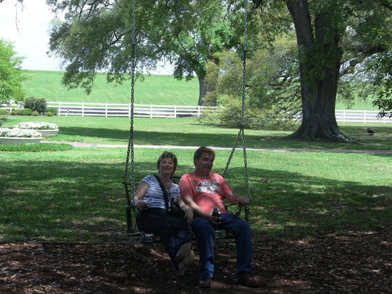 Nottoway Plantation : Swing outside