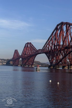 The Hairy Coo - Free Scottish Highlands Tour : Forth Bridge over the Firth of Forth