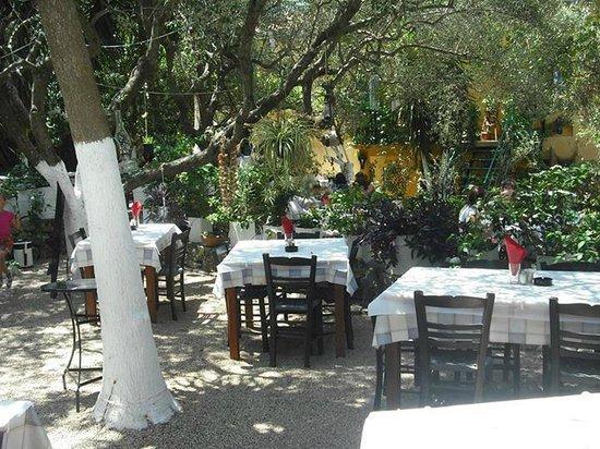 Polyphemus Restaurant: The garden