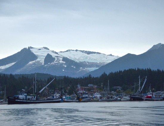 Harv and Marv's Outback Alaska: Home port for Harv and Marv