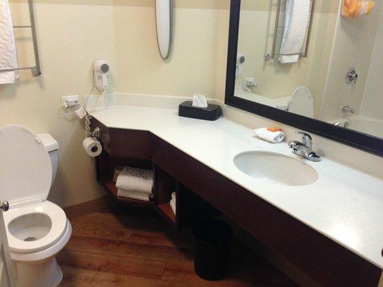 La Quinta Inn & Suites Alexandria Airport: Bathroom