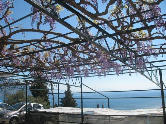 Locanda Costa d'Amalfi: estacionamento