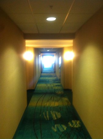 SpringHill Suites Grand Rapids Airport Southeast : 2nd floor hallway