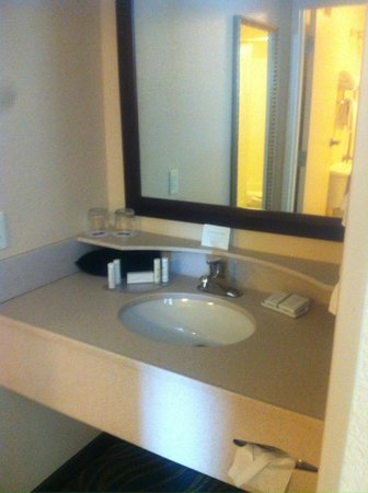 SpringHill Suites Grand Rapids Airport Southeast : sink located out fem bathroom