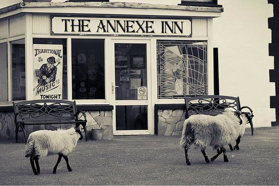 The Annexe Inn