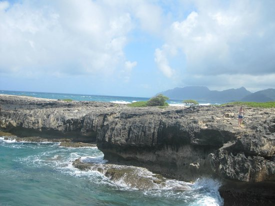Laie Point State Wayside Park : View of the point