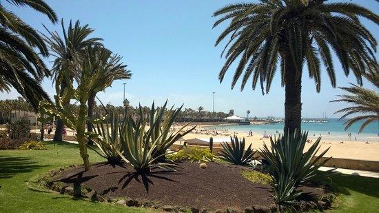 Barcelo Castillo Beach Resort: Vista dalla zona delle villette verso la spiaggia