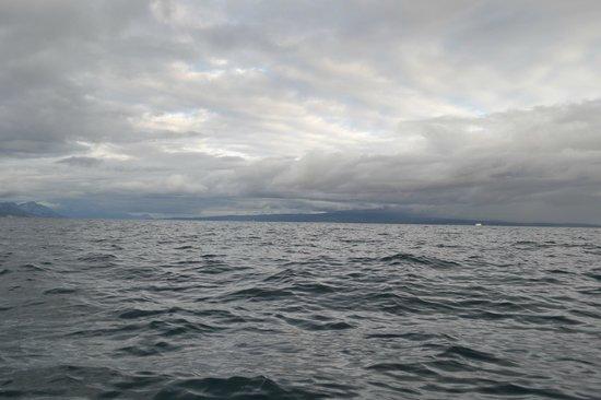 Red Adventures Croatia: Sea is beautiful
