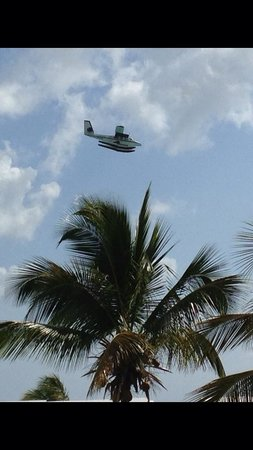 Colony Cove Beach Resort: April 2014  Seaborne airlines plane overhead