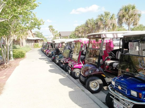 The Waterfront Inn: Lake Sumtner everyone comes in a golf cart to shop & eat.