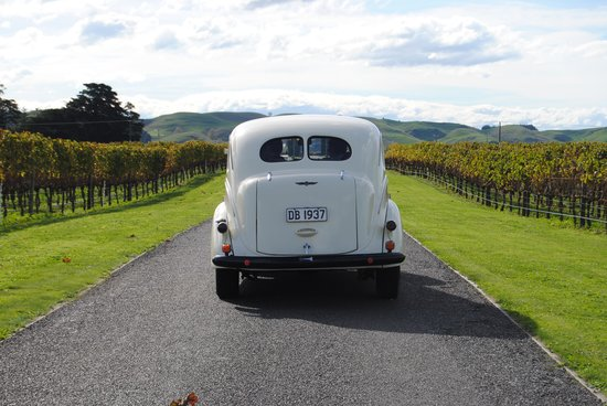 Hooters Vintage and Classic Vehicle Hire Ltd: Life at the winery