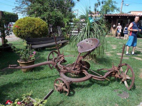 Cachacaria Vale das Aguas Quentes: Jardim