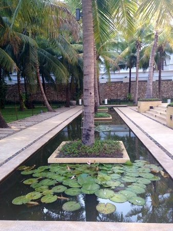Lotus Blanc Resort : Lovely grounds