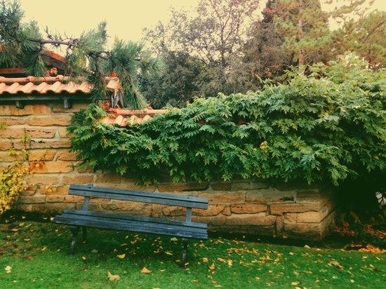 Royal Tasmanian Botanical Gardens: Outside the Japanese garden