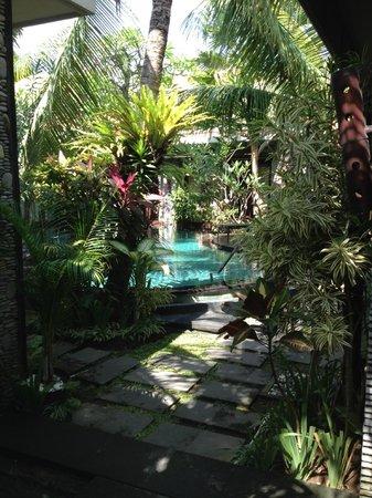 Rumah Santai Villas : Pool Area