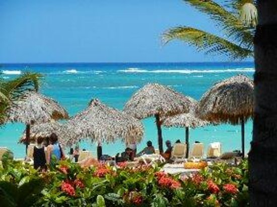 "Majestic Elegance Punta Cana: View from the ""Sea and See"" beach front bar....stunning patio views and cold beer!"