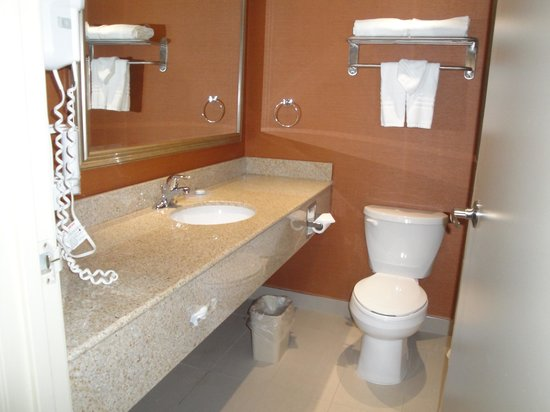 Best Western Plus Toronto North York Hotel & Suites : Salle de bain