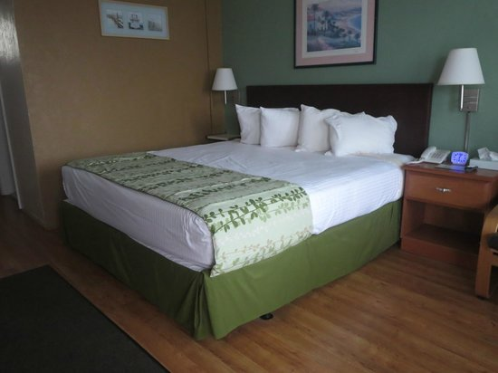 Marlane Motel: Type D bed (King)