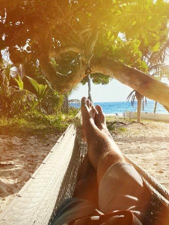 Playa Xcanan Cabanas Tulum: Zimmeraussicht