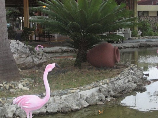 Sol Cayo Santa Maria : hotel entrance