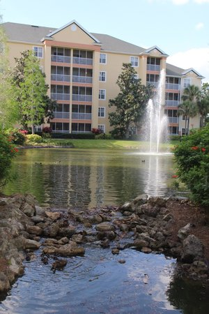 Sheraton Vistana Resort - Lake Buena Vista : Cascades unit