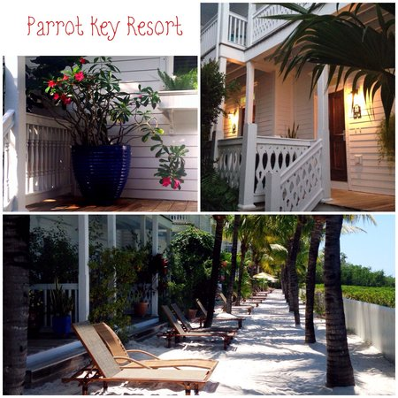Parrot Key Hotel and Resort: Parrot Key Resort