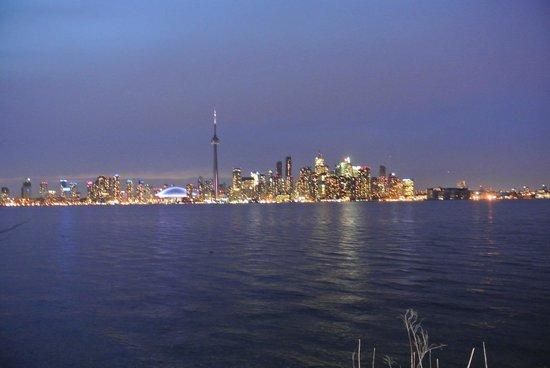 Toronto Bicycle Tours: Downtown toronto view from the tour