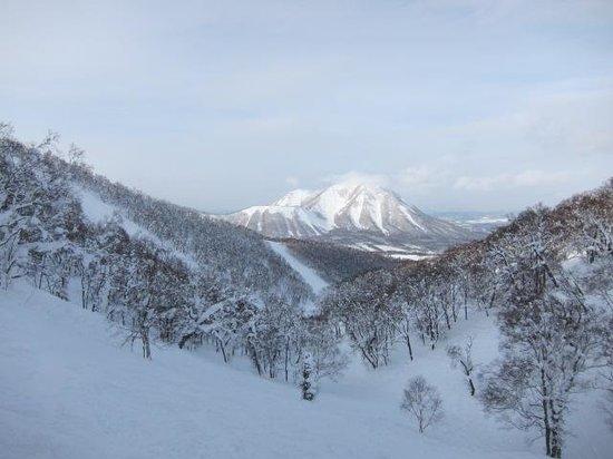 Rusutsu Resort Ski: サイドカントリー