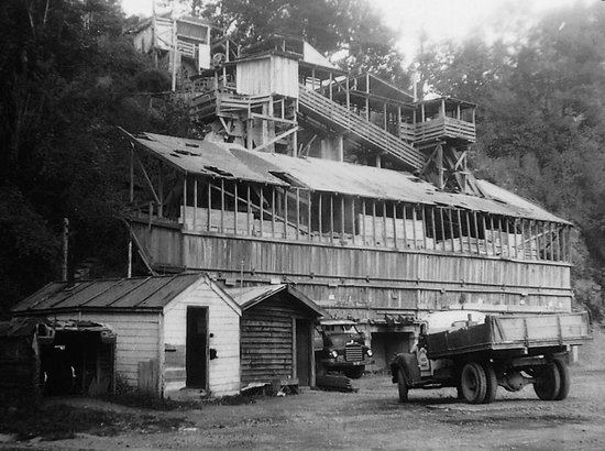 Whangarei Quarry Gardens has a rich industrial history.