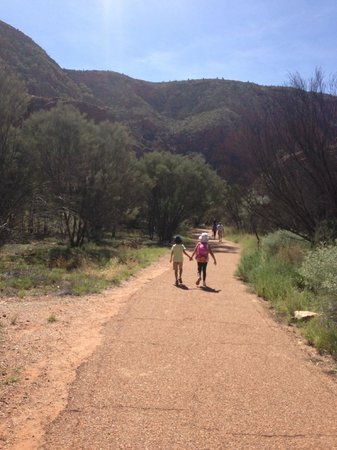MacDonnell Ranges: Kids had a ball on tour.If 7 and 8 year olds can enjoy the long day anyone can have a great day