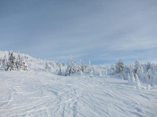 Big White Ski Resort: コース