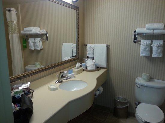Hampton Inn Laramie: Bath