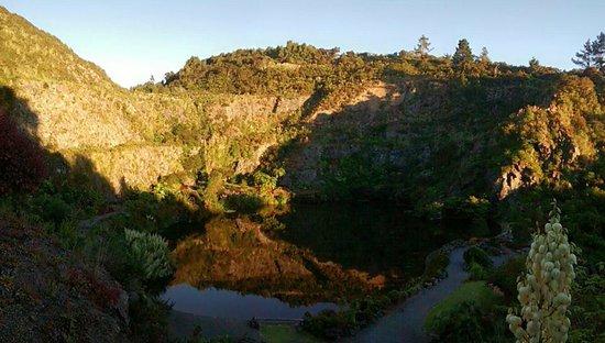 Whangarei, Nueva Zelanda: Early morning view over the lake from the Arid Garden.