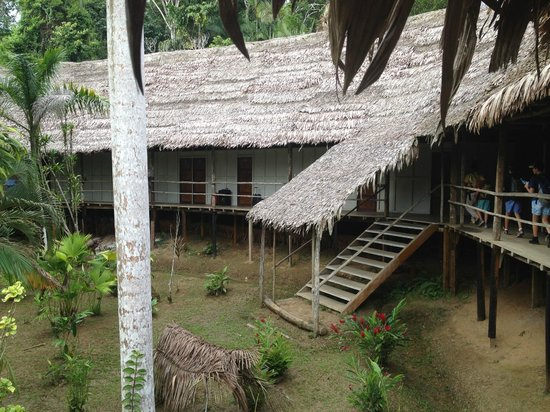 Amazon Explorama Lodges: Walkway to rooms