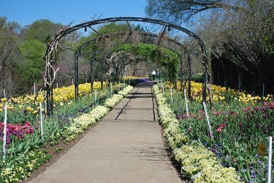 Cheekwood Botanical Gardens & Museum of Art: Cheekwood path