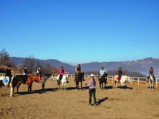 Equestrian & Recreation Centre Pegasos