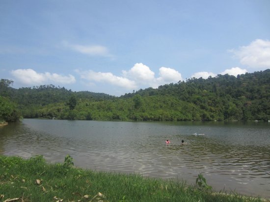 Madagui Forest Resort : Lake