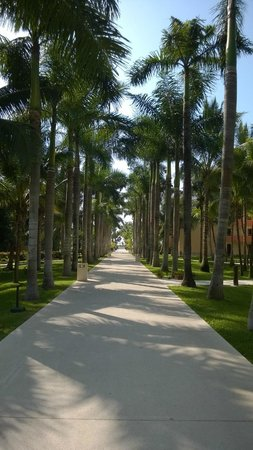 Hotel Barcelo Maya Beach: kukulcan avenida