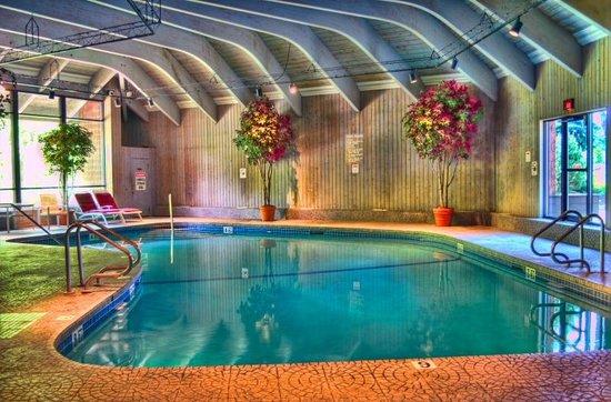 The Woodlands Inn : Indoor Pool