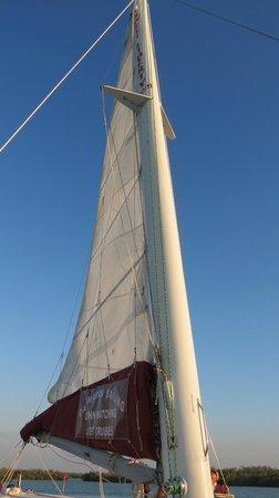 Sweet Liberty Catamaran Sailing & Boat Tours: Raising the sail