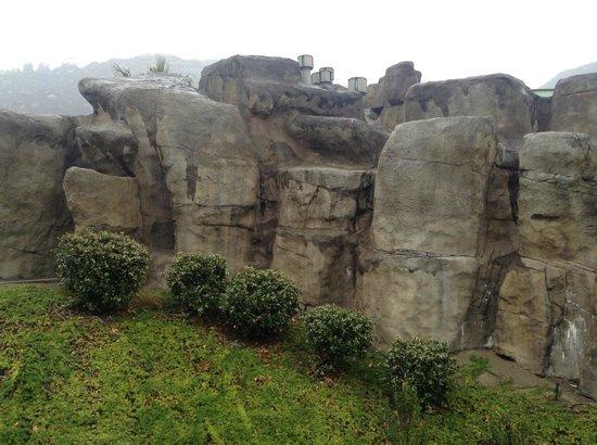 Welk Resort San Diego: Swimming Pool Rock Wall