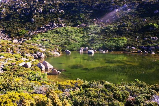 Tarn Shelf: One of the 3 lakes at the top