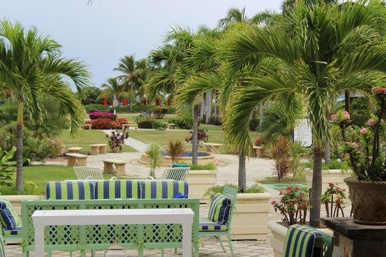 Hotel Riu Palace St Martin: Beautiful Palms