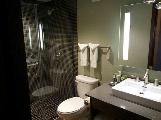 Crowne Plaza Hotel Minneapolis - Airport West Bloomington : Bathroom