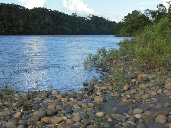 Yachana Lodge: Rio Napo