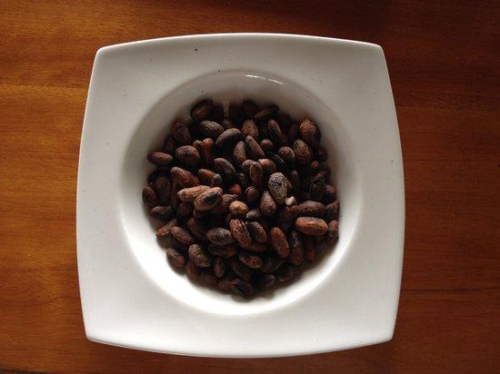 Yachana Lodge: Making chocolate :)