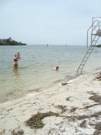 Anclote River Park: The Beach!