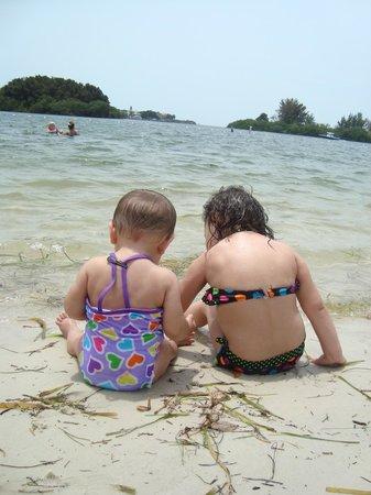 Anclote River Park: Beachin' It!